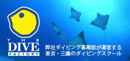 東京のダイビングスクール ザ ダイブファクトリー